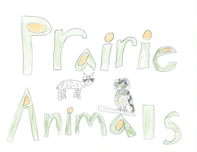 Prairie Animals: Part 1