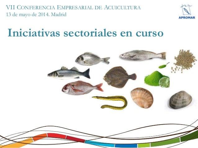 VII CONFERENCIA EMPRESARIAL DE ACUICULTURA 13 de mayo de 2014. Madrid Iniciativas sectoriales en curso