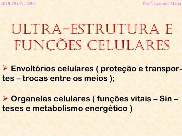 Ultra-estrutura efunções celularesBIOLOGIA / 2008 Profª. Lourdes Maria Envoltórios celulares ( proteção e transpor-tes – ...