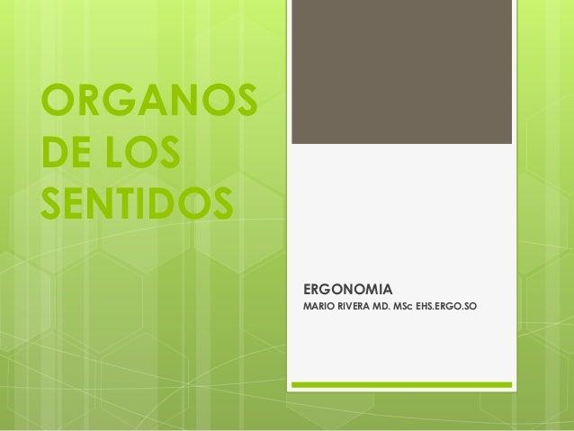 ORGANOS  DE LOS  SENTIDOS  ERGONOMIA  MARIO RIVERA MD. MSc EHS.ERGO.SO