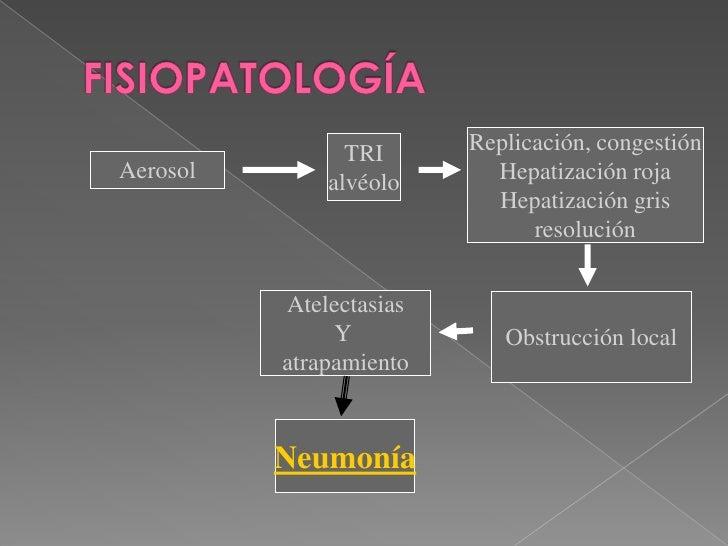 FISIOPATOLOGÍA<br />Replicación, congestión<br />Hepatización roja<br />Hepatización gris<br />resolución<br />TRI<br />al...