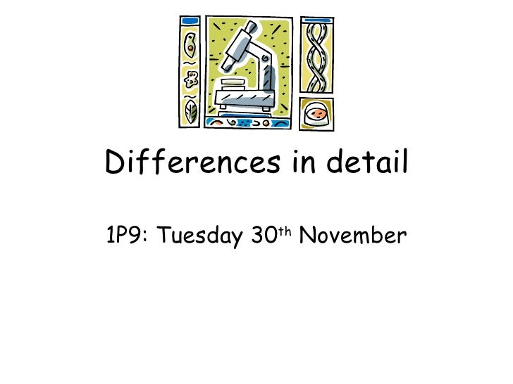 Differences in detail 1P9: Tuesday 30 th  November