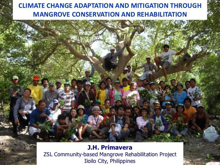 CLIMATE CHANGE ADAPTATION AND MITIGATION THROUGH    MANGROVE CONSERVATION AND REHABILITATION                      J.H. Pri...