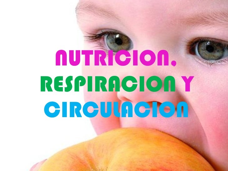 NUTRICION,RESPIRACION YCIRCULACIONHaga clic para modificar el estilo de        subtítulo del patrón