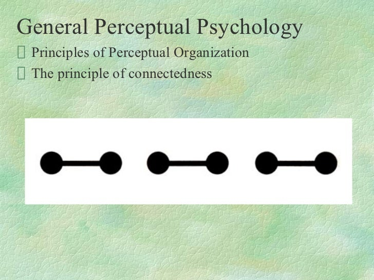 principles of organizational psychology The human: basic psychological principles april, 2012 outlines elements of psychology relevant to occupational health and safety (ohs) professional practice.
