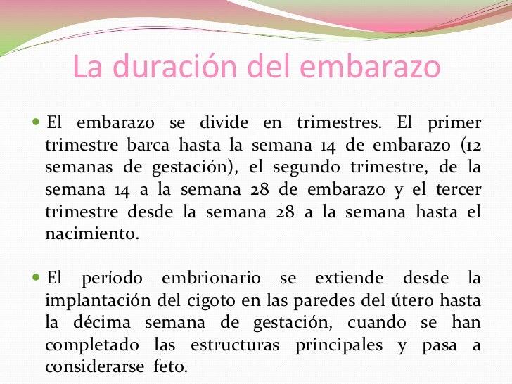 Sistema Reproductor Femenino y el Embarazo