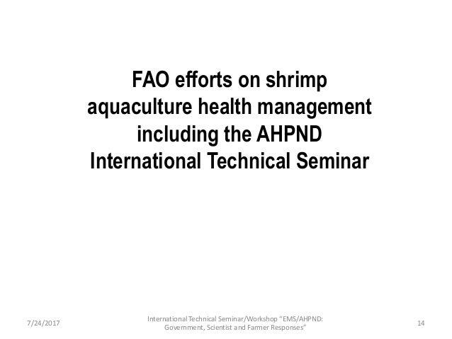 Presentation 1: FAO efforts on shrimp aquaculture health