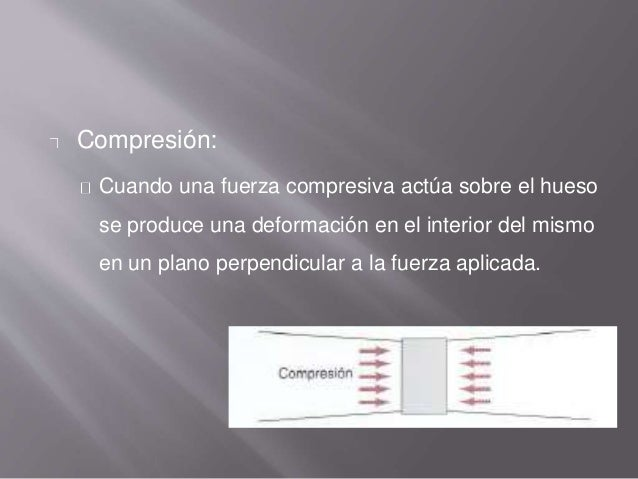 Compresión: Cuando una fuerza compresiva actúa sobre el hueso se produce una deformación en el interior del mismo en un pl...