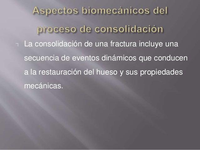 Consolidación directa, cortical o primaria: Aparece cuando se consigue una reducción anatómica de los fragmentos completam...
