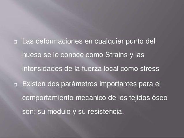 Las deformaciones en cualquier punto del hueso se le conoce como Strains y las intensidades de la fuerza local como stress...