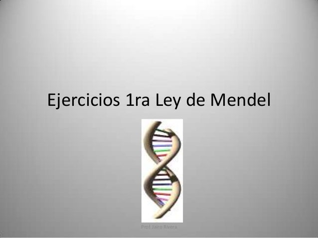 Ejercicios 1ra Ley de Mendel  Prof. Jairo Rivera