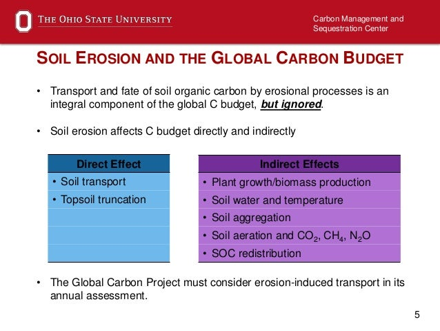 importance of carbon in soil
