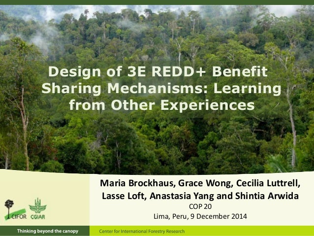 Design of 3E REDD+ Benefit  Sharing Mechanisms: Learning  from Other Experiences  Maria Brockhaus, Grace Wong, Cecilia Lut...