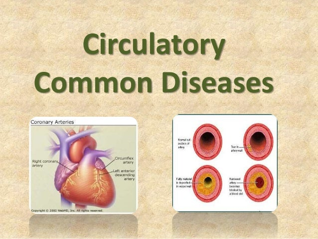 circulatory diseases A circulatory disorder is any disorder or condition that affects the circulatory system circulatory disorders can arise from problems with the heart, blood vessels or the blood itself disorders of the circulatory system generally result in diminished flow of blood and oxygen supply to the tissues.