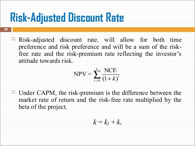 1 risk analysis in capital budgeting Rogg discount