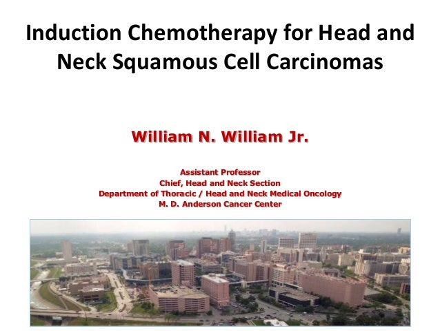 Introduction to chemotherapy of cancer.