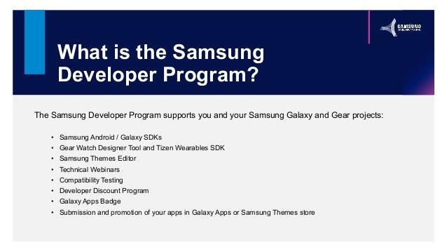 What is the Samsung Developer Program?