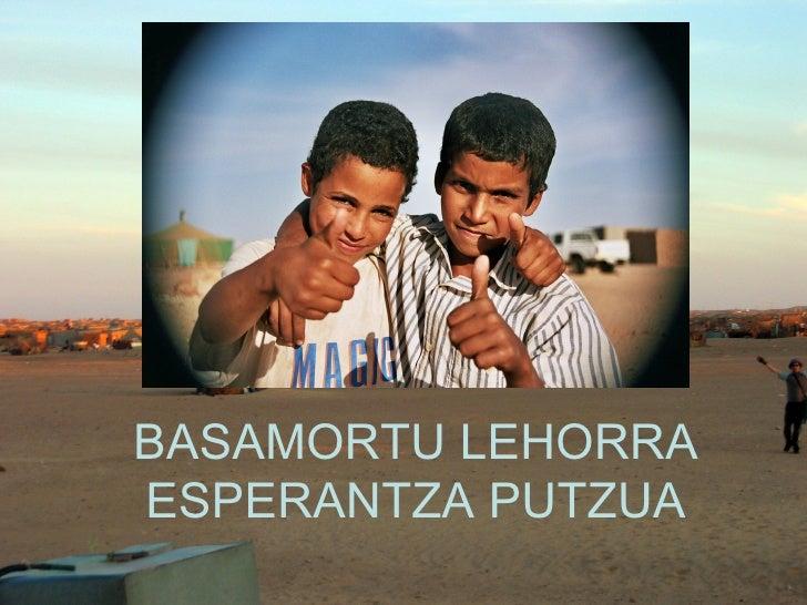 BASAMORTU LEHORRA ESPERANTZA PUTZUA