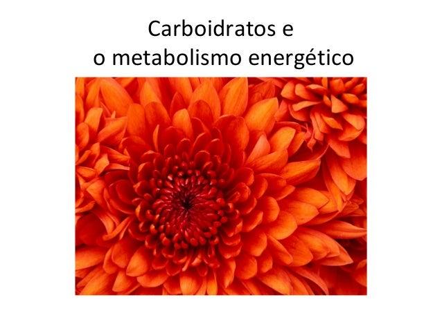 Data da gravação: Professora: Série: Matéria: Assunto: 02/03 Ionara 1º EM Biologia Metabolismo e Estrutura Celular Aulas 5...