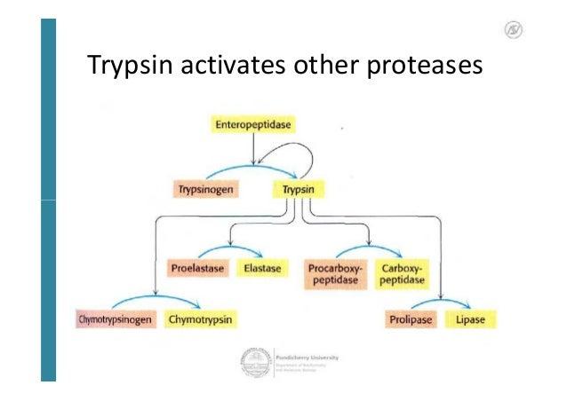 Precursor Activation Example