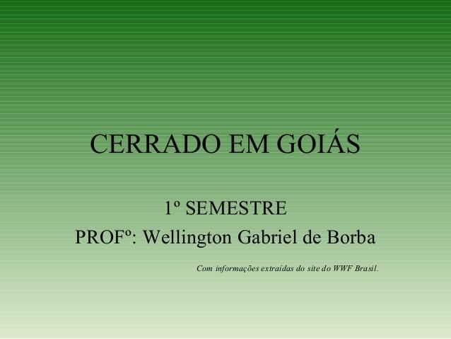 CERRADO EM GOIÁS 1º SEMESTRE PROFº: Wellington Gabriel de Borba Com informações extraídas do site do WWF Brasil.