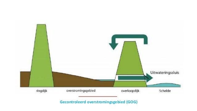 Gecontroleerd overstromingsgebied (GOG)