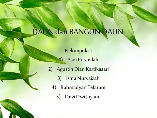 Unduh 670 Koleksi Background Power Point Daun Paling Keren