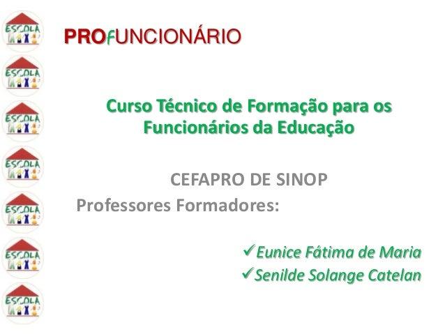 PROFUNCIONÁRIO Curso Técnico de Formação para os Funcionários da Educação CEFAPRO DE SINOP Professores Formadores: Eunice...