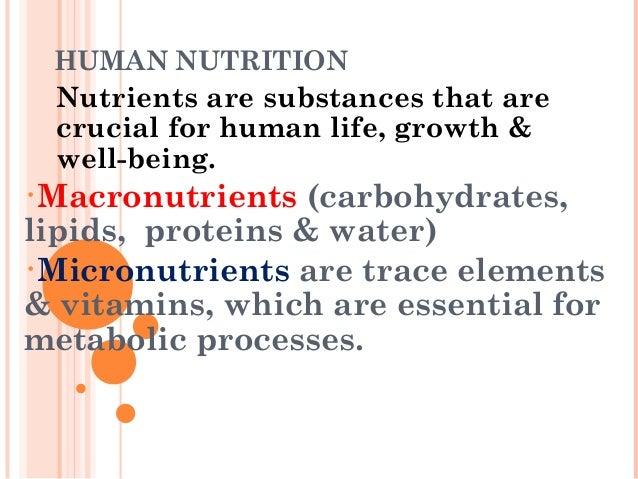 1slide share malnutrition modify Slide 3
