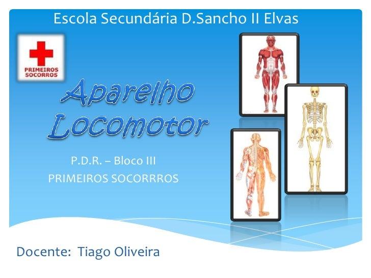 Escola Secundária D.Sancho II Elvas        P.D.R. – Bloco III     PRIMEIROS SOCORRROSDocente: Tiago Oliveira