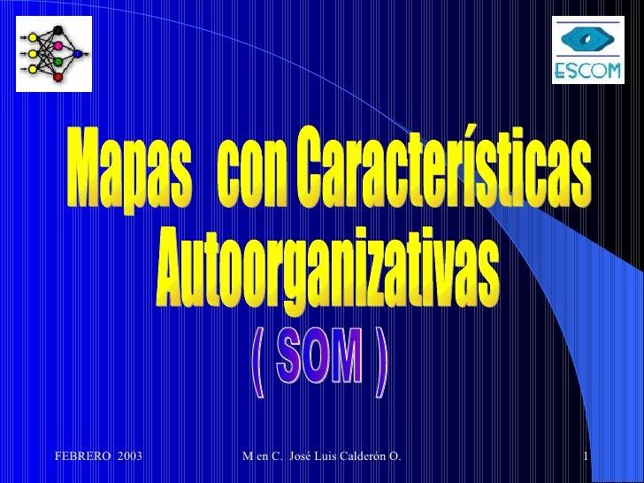 Mapas  con Características Autoorganizativas ( SOM )