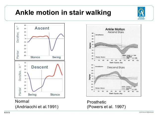 Plantar  Dorsiflex. in °  Plantar  Dorsiflex. in °  Ankle motion in stair walking Ascent  Stance  Swing  Descent  Swing  S...