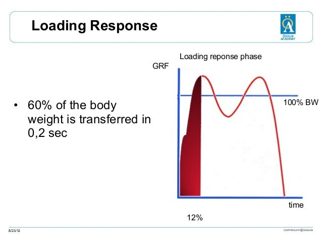 Loading Response Loading reponse phase GRF  100% BW  • 60% of the body weight is transferred in 0,2 sec  time 12% 8/23/12