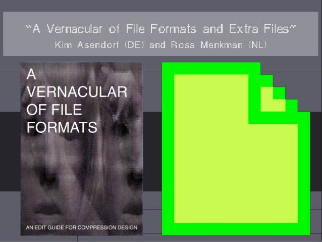 """A Vernacular of File Formats and Extra Files"" Kim Asendorf (DE) and Rosa Menkman (NL)"