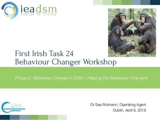 First Irish Task 24  Behaviour Changer Workshop Phase 2: Behaviour Change in DSM – Helping the Behaviour Changers Dr Sea ...