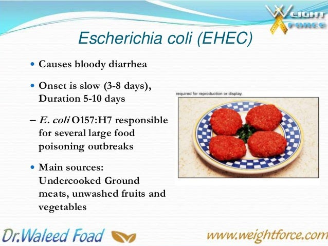 Introduction To Food Hygiene And Food Poisoning Microorganisms