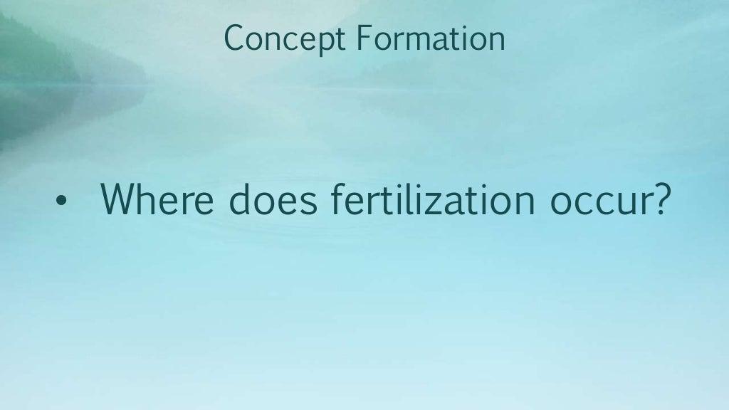 1st Science 4 Fertilization