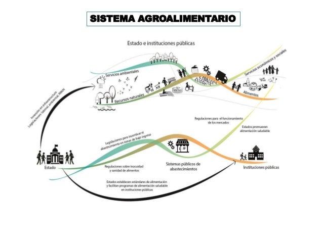 Seguridad Alimentaria y Nutricional, Sistemas Públicos de Abastecimie…