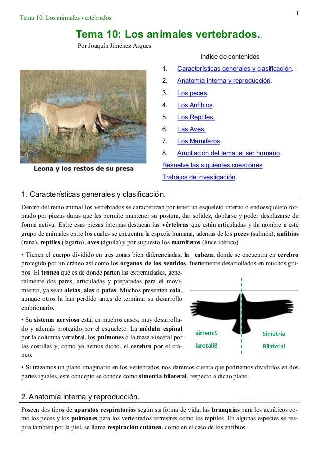 1 Tema 10: Los animales vertebrados. Indice de contenidos 1. Características generales y clasificación. 2. Anatomía intern...