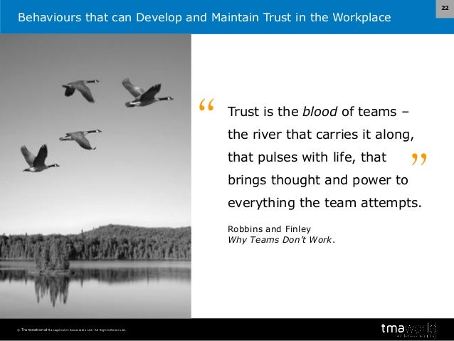 developing and maintaining trust in organisations Management's role in shaping organizational culture  development and maintenance of organizational culture it describes the types of  trust in an organization .