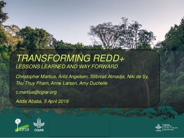 TRANSFORMING REDD+ LESSONS LEARNED AND WAY FORWARD Christopher Martius, Arild Angelsen, Stibniati Atmadja, Niki de Sy, Thu...