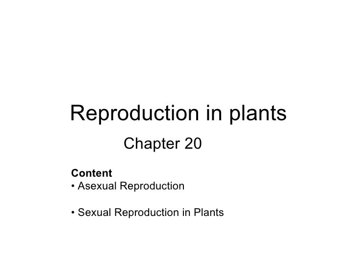 Reproduction in plants Chapter 20 <ul><li>Content  </li></ul><ul><li>•  Asexual Reproduction  </li></ul><ul><li>•  Sexual ...