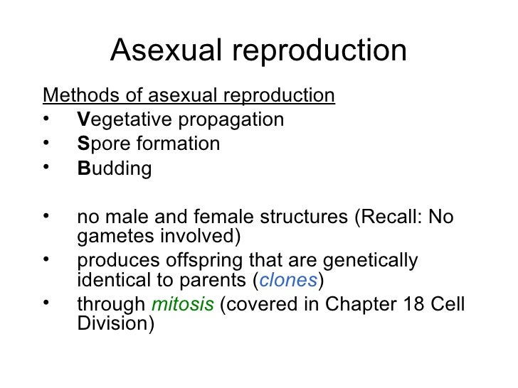 Chapter 16 Reproduction In Plants Lesson 1 Types Of Reproduction In