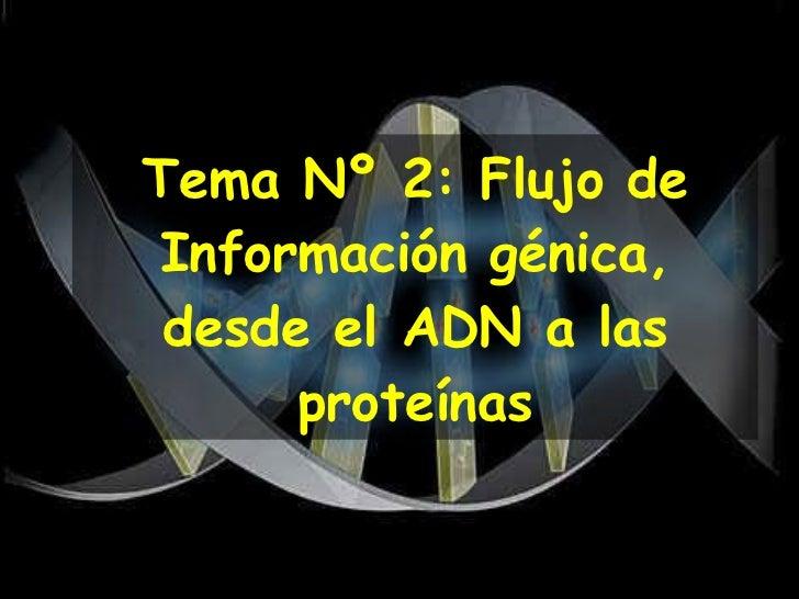Tema Nº 2: Flujo de Información génica, desde el ADN a las proteínas