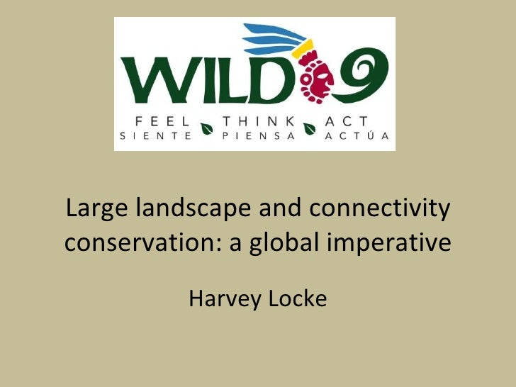 Large landscape and connectivity conservation: a global imperative Harvey Locke