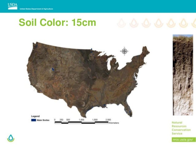 Black Soils Mollisols In The USA - Soil color us map