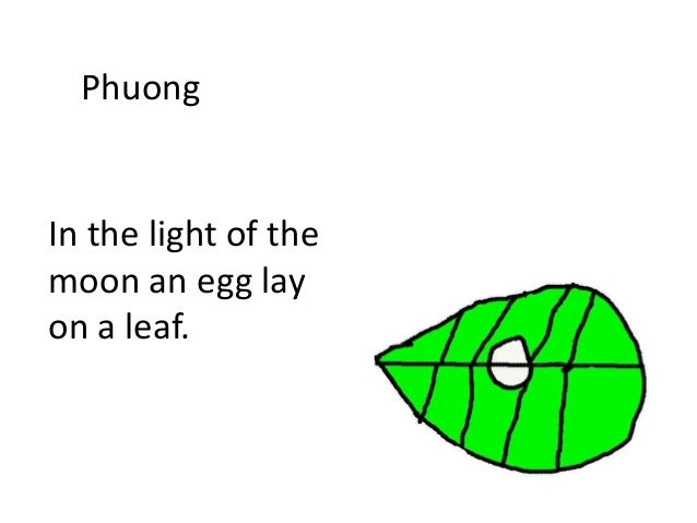Phuong In the light of the moon an egg lay on a leaf.