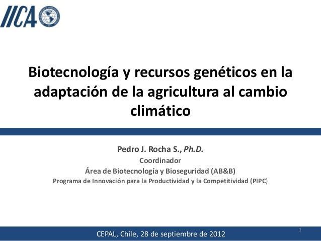 Biotecnología y recursos genéticos en la adaptación de la agricultura al cambio climático Pedro J. Rocha S., Ph.D. Coordin...