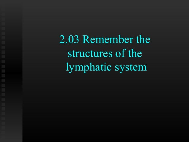 2.03 Remember the  structures of the lymphatic system