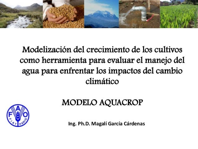 Modelización del crecimiento de los cultivos como herramienta para evaluar el manejo del agua para enfrentar los impactos ...